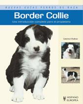 Guía. Border Collie. (Caterina O'Sullivan)