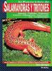 Libro. El nuevo libro de Salamandras y Tritones. (Frank Indiviglio)
